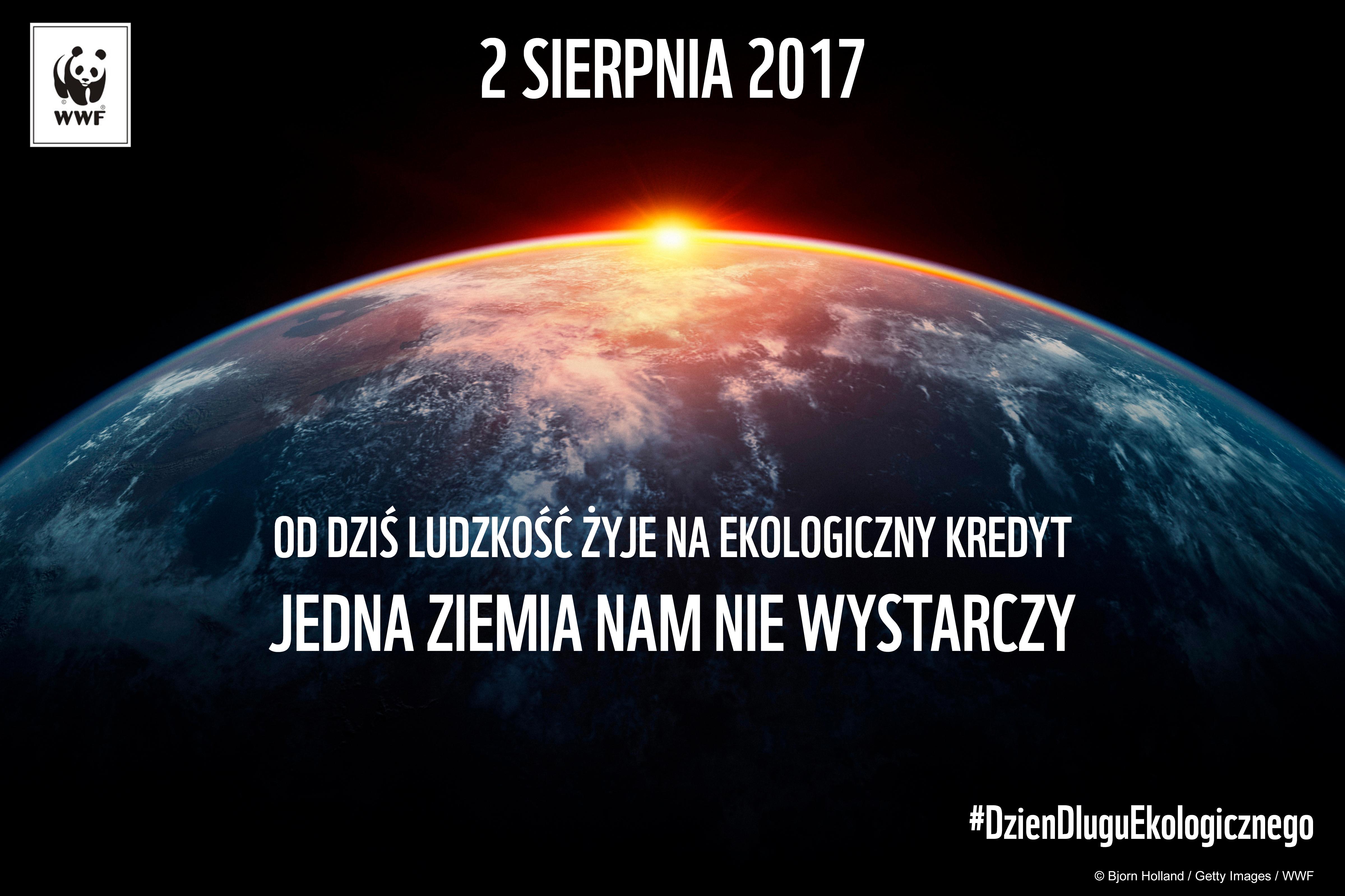 WWF - kredyt 2017