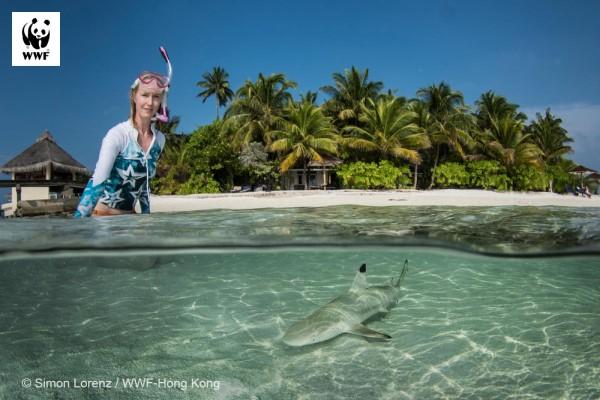 Młody rekin